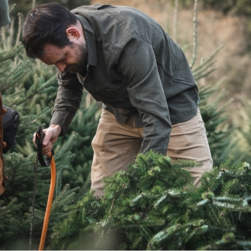 Father and Son cutting Christmas tree together