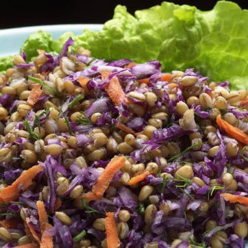 Lentils with shredded red onion and carrots