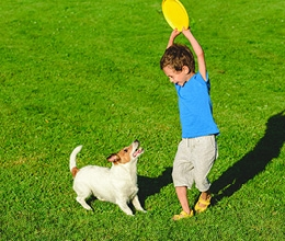 Young boy playing frisbee with his dog